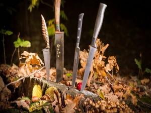 Diferentes modelos de cuchillos en un bosque