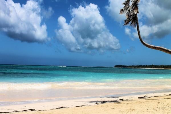 Impresionante playa de arena blanca (Punta Cana, República Dominicana)