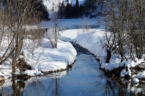 Orillas cubiertas de nieve