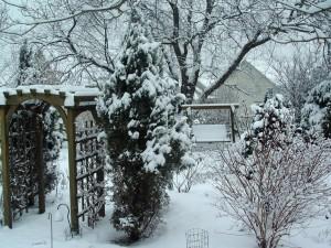 Postal: Jardín cubierto de nieve
