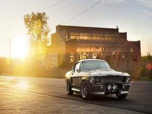 Sol brillando tras un Ford Mustang