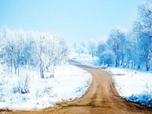 Postal: Camino sin nieve