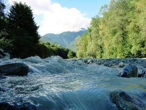 Postal: Cauce de un río