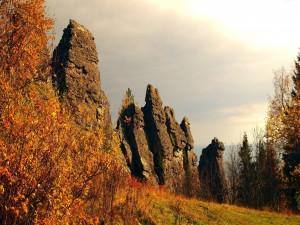 Árboles otoñales junto al acantilado