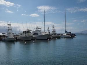 Postal: Barcos de pesca y recreo