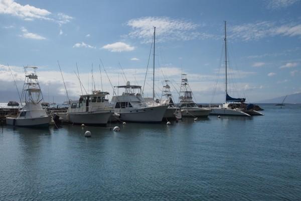 Barcos de pesca y recreo