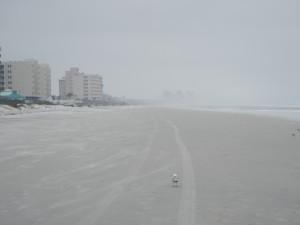 Niebla en una playa durante el invierno