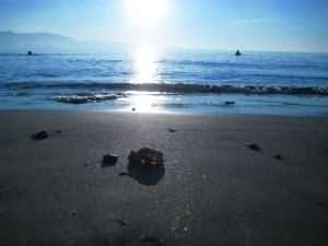 Postal: El sol brillando sobre la orilla del mar