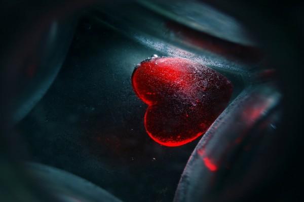 Mi vida dentro de tu corazón