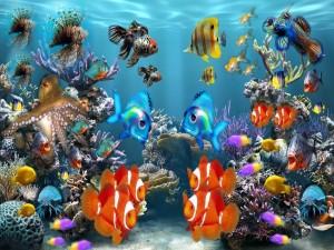 Postal: Peces tropicales en un acuario