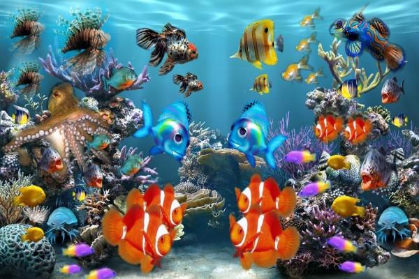Peces tropicales en un acuario 54121 for Peces tropicales