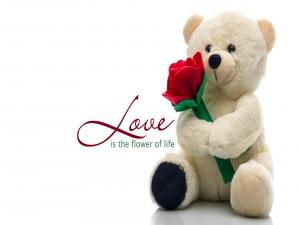 Postal: El amor es la flor de la vida