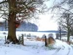 Camino vallado cubierto de nieve