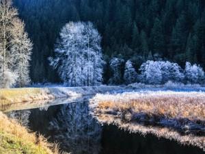 Río al comienzo del invierno