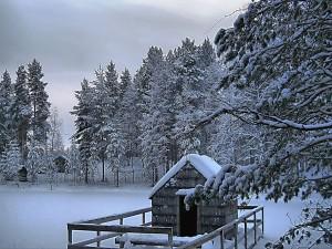Caseta cubierta de nieve