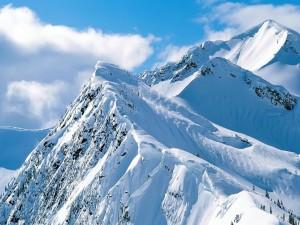 Cumbres blancas