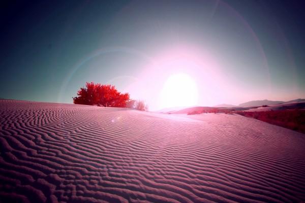 El sol iluminando un paisaje desértico
