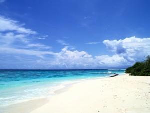 Postal: Playa de arena blanca solitaria