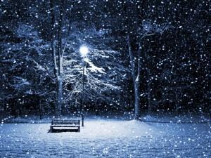 Noche de nieve en un parque