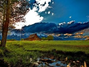 El sol brillando sobre un prado verde