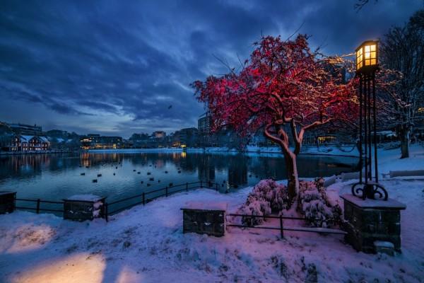 Amanecer invernal en Noruega