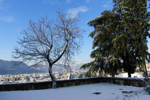 Nieve a las afueras de una ciudad