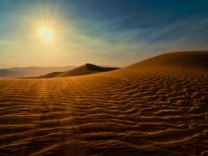Sol y viento en el desierto