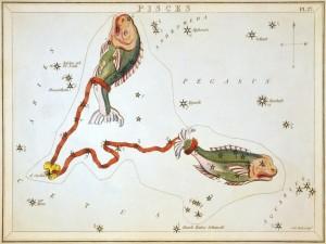 Imagen de la constelación de Piscis
