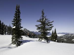 Postal: Paseo en moto de nieve