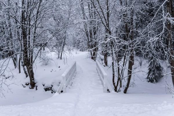 Pequeño puente de madera cubierto de nieve