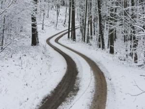 Postal: Huellas de coche en una carretera cubierta de nieve