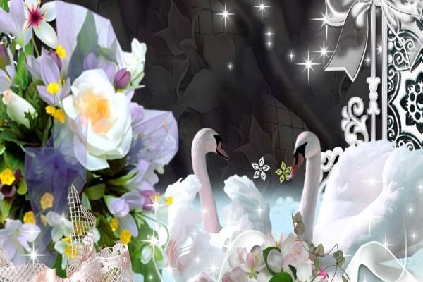 Romántica imagen con cisnes y flores