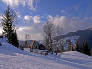 Postal: Nieve junto a una casa en ruinas