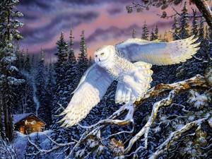 Búho nival volando sobre un bosque