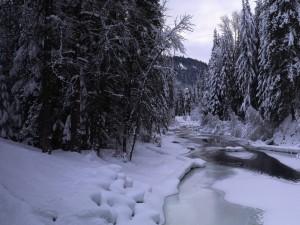 Postal: Hielo y nieve sobre un río