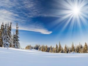 Radiante sol sobre un paisaje nevado