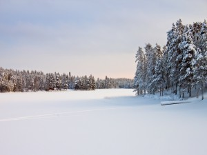 Manto de nieve en la superficie de un río