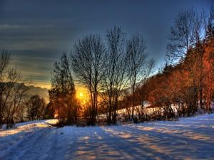 Postal: El sol del amanecer calentando el paisaje nevado