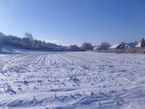 Nieve sobre un campo de cultivo