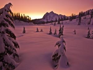 Postal: La luz del amanecer sobre la nieve