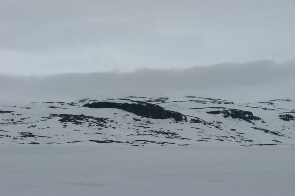 Paisaje solitario cubierto de nieve