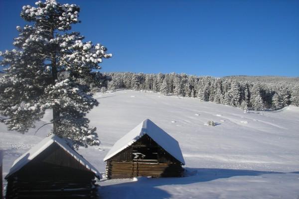 Cabañas en una ladera cubierta de nieve