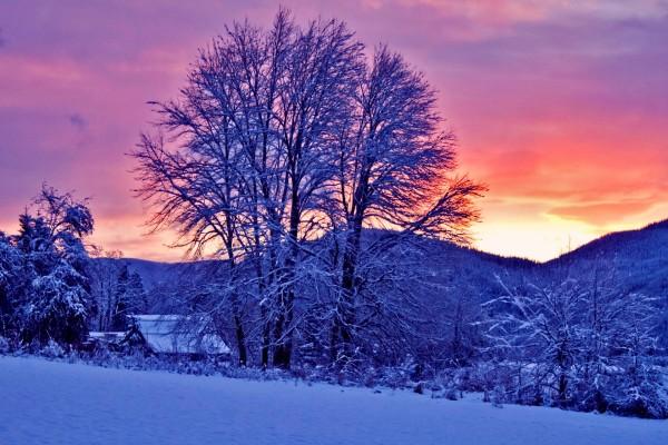 Paisaje nevado al amanecer