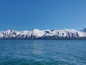 Postal: Montañas nevadas junto al agua