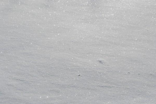 Destellos sobre la nieve