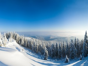 Postal: Cielo azul sobre un paisaje nevado
