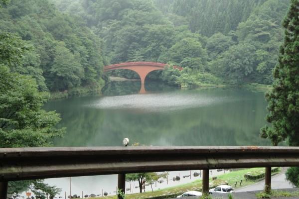 Puente rojo en el bosque