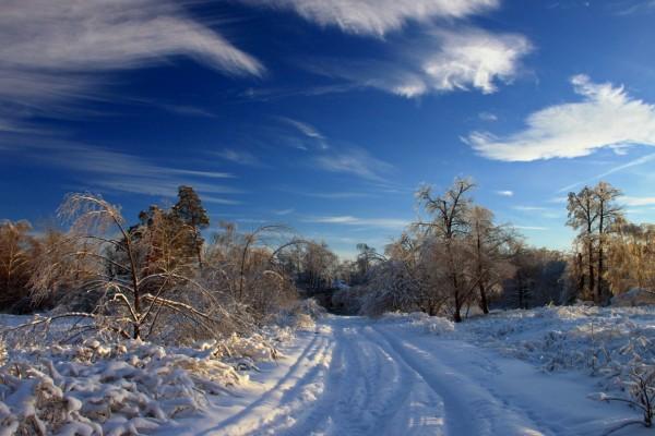 Un camino cubierto de nieve