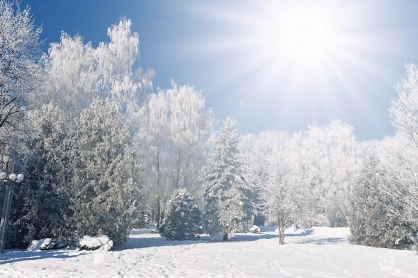 Un brillante sol sobre un parque cubierto de nieve