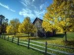 Árboles otoñales junto a un granero